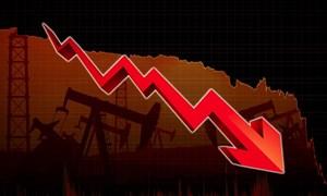 Lo ngại đợt bùng phát Covid-19 thứ hai, giá dầu liên tiếp lao dốc