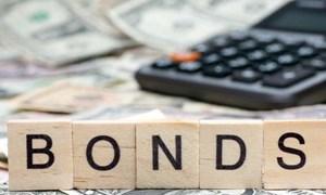 Phê duyệt hạn mức phát hành trái phiếu trong nước được Chính phủ bảo lãnh