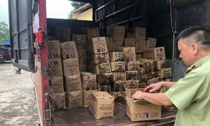 8.000 que kem Trung Quốc bị bắt giữ tại Lào Cai