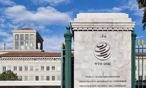 Mỹ muốn thúc đẩy cải cách thuế của WTO