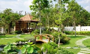 Những lợi ích khi thiết kế sân vườn