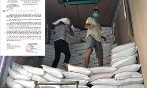 Vì sao Bộ Công Thương hỏa tốc kiểm tra doanh nghiệp xuất nhập khẩu gạo?