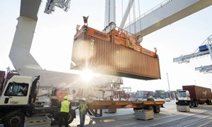 Thực thi cơ chế hạn ngạch thuế quan trong Hiệp định EVFTA