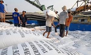 Muốn hưởng ưu đãi thuế vào EU, gạo phải được cấp giấy chứng nhận trước khi sản xuất