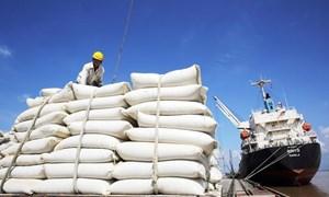 Giảm giá gạo xuất khẩu có phải là giải pháp cạnh tranh hiệu quả?