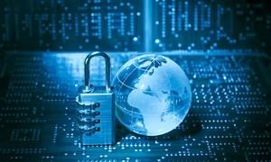 Hợp tác phòng chống tội phạm mạng