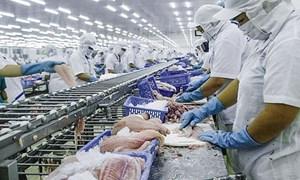 Quy tắc xuất xứ trong EVFTA: Những điều lưu ý