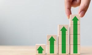 Cổ phiếu lớn: Cuộc thanh lọc khắc nghiệt