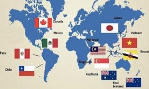 Peru phê chuẩn CPTPP và cơ hội xuất khẩu của Việt Nam