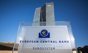 ECB giữ nguyên lãi suất, ổn định chính sách tiền tệ