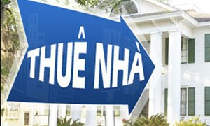 Xem xét tháo gỡ vướng mắc, hoàn thiện quy định thu thuế với người cho thuê nhà