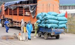 Tạo điều kiện thuận lợi cho lưu thông hàng hóa trong mùa dịch