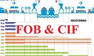 Xây dựng chiến lược xuất khẩu theo giá CIF