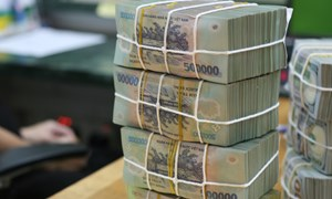 Phạt hành chính, truy thu thuế, thu hồi thuế và tiền bán hàng tịch thu đạt gần 310 tỷ đồng