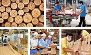 Mạnh tay với hàng hóa xuất khẩu gian lận, lẩn tránh thuế chống bán phá giá