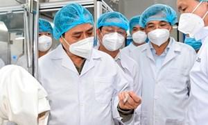 Chủ động đề xuất các cơ chế, chính sách ưu đãi để thúc đẩy nghiên cứu, sản xuấtvắc xin