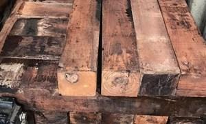 Hải quan: Bắt giữ 60 container gỗ quý nhập khẩu vào Việt Nam