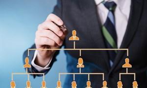 Hoạt động kinh doanh theo phương thức đa cấp: Từng bước ổn định