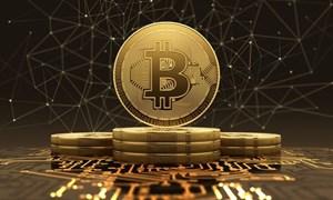 Bitcoin hiện đang giao dịch tại mức 11.786 USD/BTC