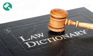 Giải thích thuật ngữ trong Bộ luật Hình sự về lĩnh vực BHXH, BHYT