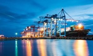 Xuất khẩu đa kênh vào thị trường có FTA