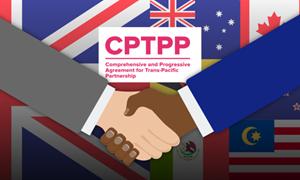 """Anh bắt đầu đàm phán gia nhập CPTPP và """"thế trận"""" tiếp cận ASEAN"""