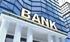 Các tổ chức tín dụng bị kiểm soát đặc biệt trong trường hợp nào?