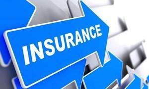 8 tháng đầu năm 2019, bảo hiểm đầu tư trở lại nền kinh tế gần 367 nghìn tỷ đồng