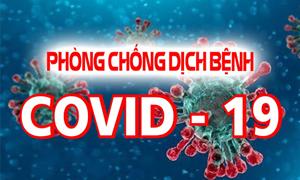 Tổng cục Thuế thành lập Ban chỉ đạo phòng, chống dịch COVID-19
