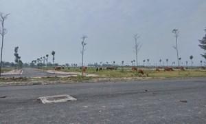 Sẽ hết cảnh chủ đầu tư ôm đất bỏ hoang?
