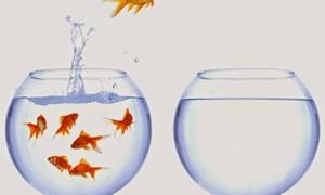 11 thói quen khiến bạn bứt phá giới hạn của bản thân