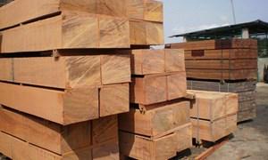 Xuất khẩu gỗ: Hướng tới mục tiêu 12,5 tỷ USD năm 2020