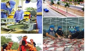 Tăng cường vai trò thực hiện an sinh xã hội  của doanh nghiệp Việt Nam