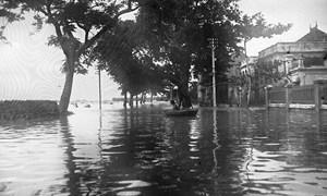 Lịch sử môi trường và thiên tai ở Việt Nam: Bài học cho tương lai