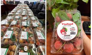 Thêm cầu nối để xuất khẩu hàng Việt sang EU