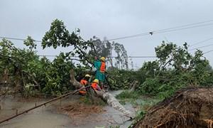 Chính phủ yêu cầu các bộ, ngành, địa phương chủ động ứng phó với bão, mưa lũ