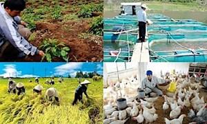 Đề xuất sửa đổi quy định về phí trong chính sách tín dụng phát triển nông nghiệp, nông thôn