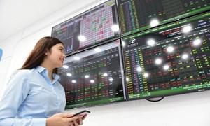 Cổ phiếu vừa và nhỏ có thực sự rẻ?