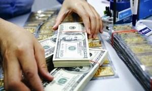 Phiên đầu tuần, giá vàng và USD trong nước đồng loạt tăng