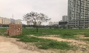 Hà Nội lập đoàn kiểm tra rà soát các dự án bỏ hoang