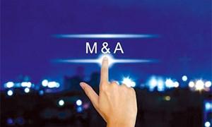 Sóng ngầm M&A công ty chứng khoán