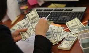 Khai thuế, nộp thuế bằng ngoại tệ tự do chuyển đổi được phép thực hiện trong trường hợp nào?