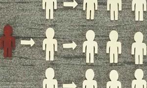 9 dấu hiệu để nhận diện kinh doanh đa cấp bất hợp pháp