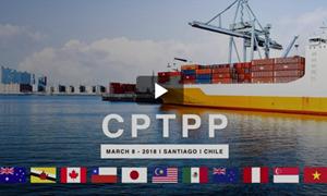 Áp dụng các biện pháp tự vệ đặc biệt để thực thi Hiệp định CPTPP