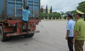 Tổng cục Hải quan đôn đốc công tác chống buôn lậu, vận chuyển trái phép động vật qua biên giới
