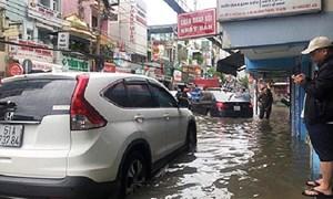 TP. Hồ Chí Minh: Sức mua tại siêu thị tăng cao sau bão số 9