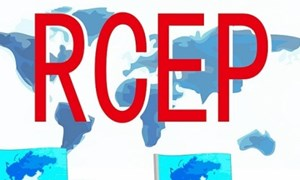Doanh nghiệp Việt trước thách thức chênh lệch về kinh tế giữa các thành viên RCEP