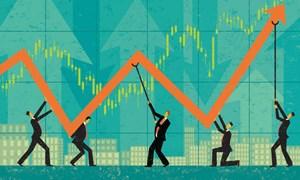 """Cổ phiếu nào """"dậy sóng"""" trong tháng 12?"""