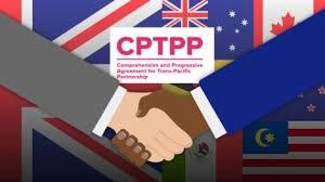 Hàn Quốc xem xét gia nhập CPTPP để mở rộng mạng lưới thương mại tự do