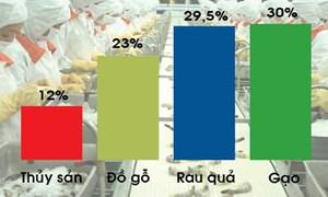 Chi phí logistics cao, nông sản giảm sức cạnh tranh